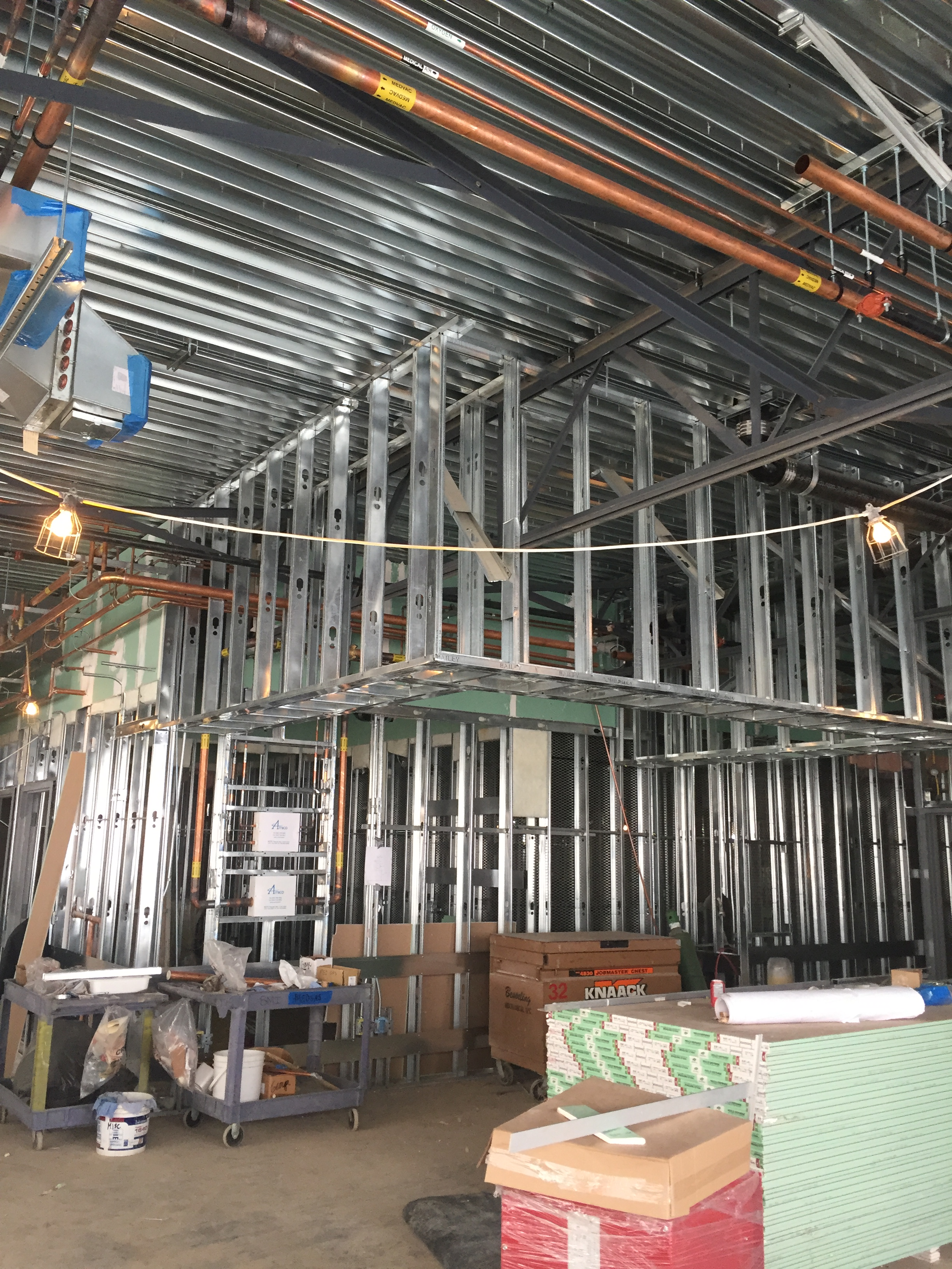 Steel Framing in Edge Water